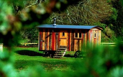 Tiny House, la petite maison écolo