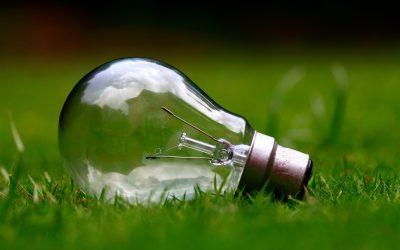 Quand écologie rime avec économie